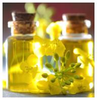 huile de colza lolomix thermomix