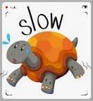Tortue slow lolomix